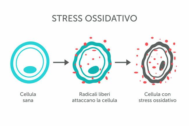 cause-stress-ossidativo